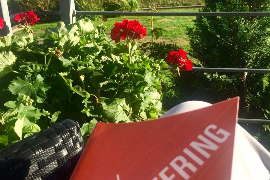 Läser bok i solen